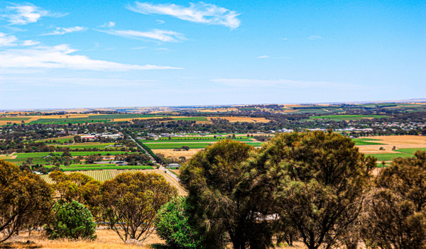 Barossa Valley, South Australia by DavidParkerPhotography