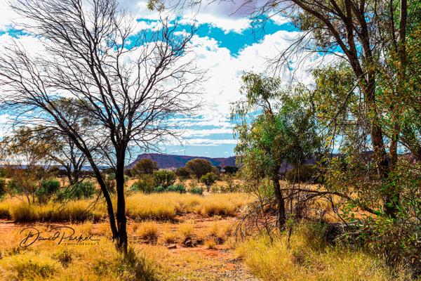 George Gills Range by DavidParkerPhotography