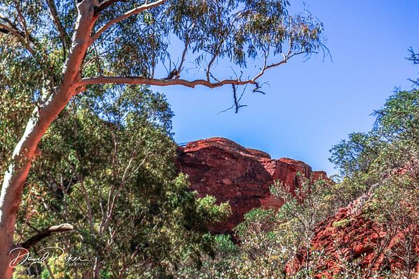 Canyon Wall, taken from Kings Creek Walk by...