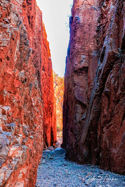 Stanley Chasm by DavidParkerPhotography