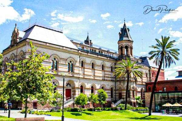 Adelaide Museum by DavidParkerPhotography