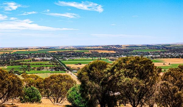 Barossa Valley by DavidParkerPhotography