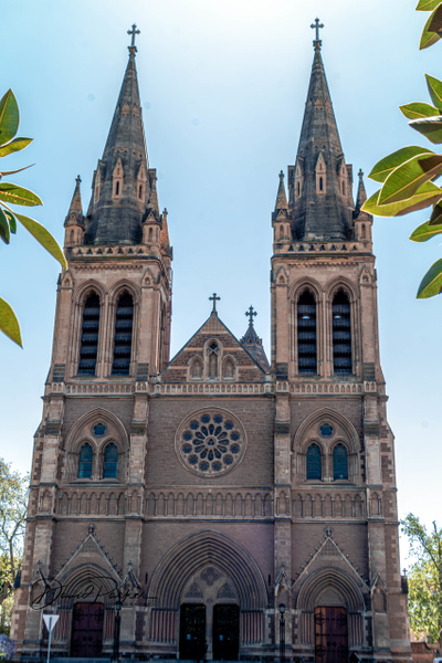 St Peter's Cathedral, Adelaide by DavidParkerPhotography
