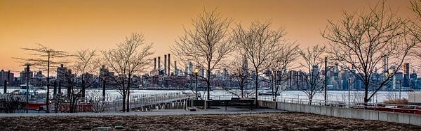 2018_004 - Behind The Trees - NewYork by ALEJANDRO DEMBO
