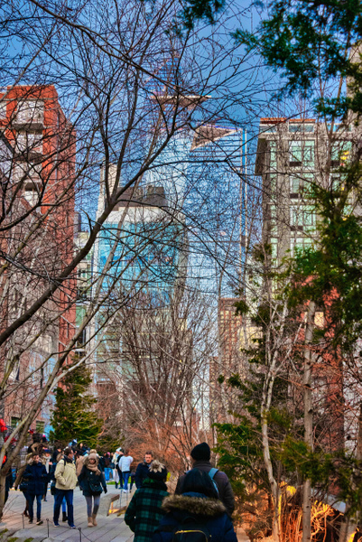 2018_001 - Behind The Trees - NewYork by ALEJANDRO DEMBO