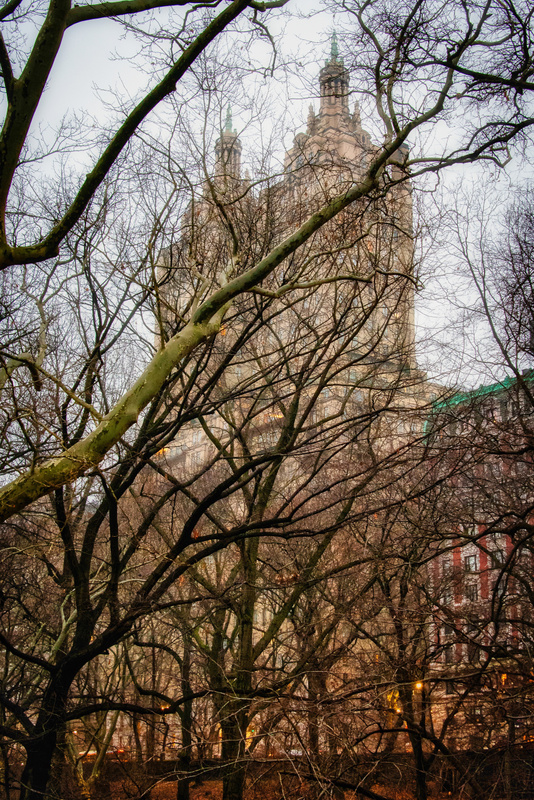 2019_001 - Behind The Trees - NewYork