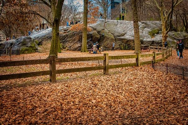 2018_0175 - Street - New York by ALEJANDRO DEMBO