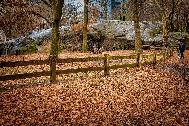 2018_0175 - Street - New York