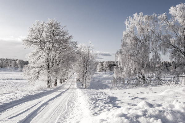 winter-road-uppland-sweden