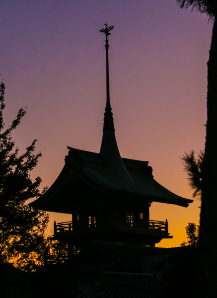 japan-6795 by Phil Steele