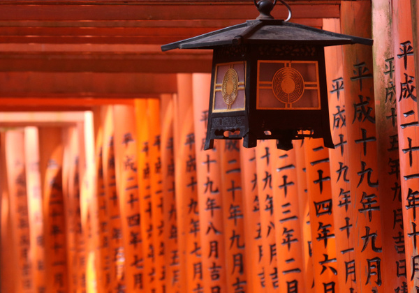japan-7017 by Phil Steele
