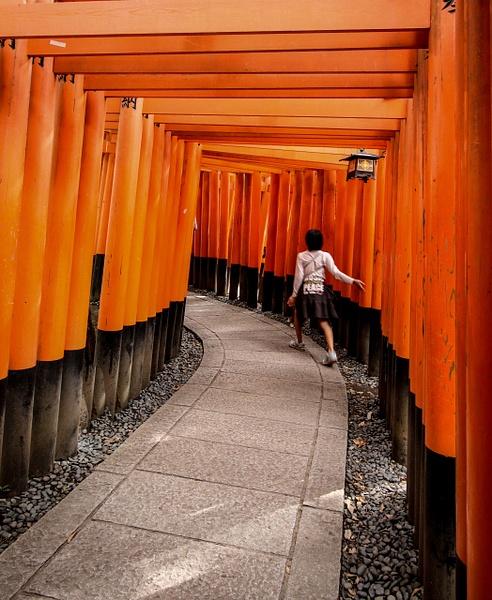 japan-7038 by Phil Steele