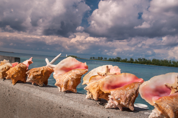 Nassau, Bahamas - Travel - Alain Gagnon Photography
