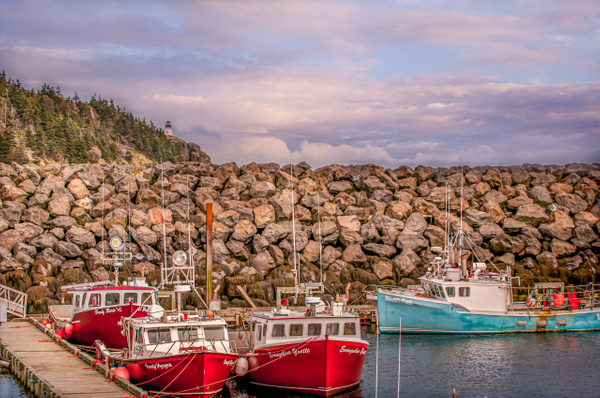 Brier Island, NS - Landscape and Nature - Alain Gagnon Photography