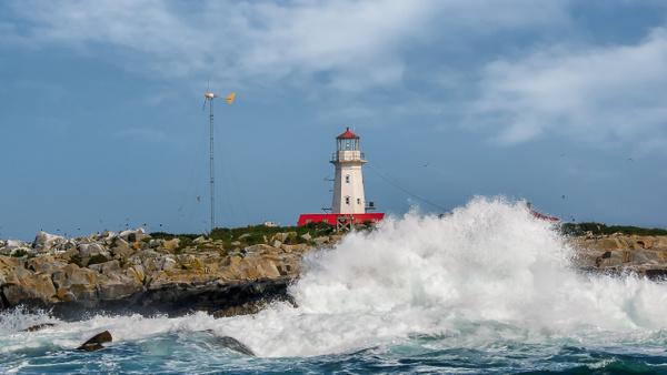 Mathias-Seal Island - Travel - Alain Gagnon Photography