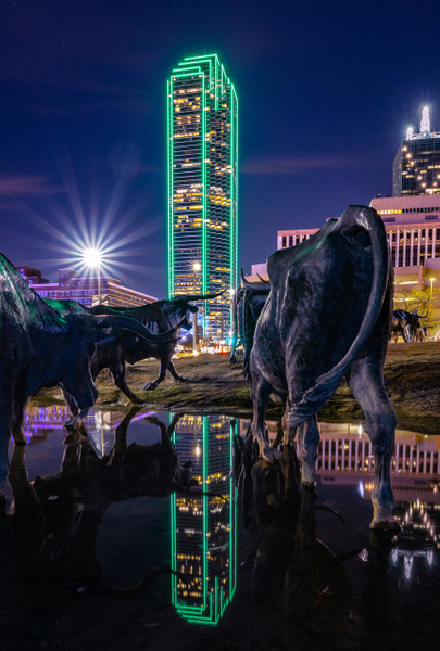 Dallas_Pioneer Park - Cityscapes - John Roberts - Clicking With Nature®
