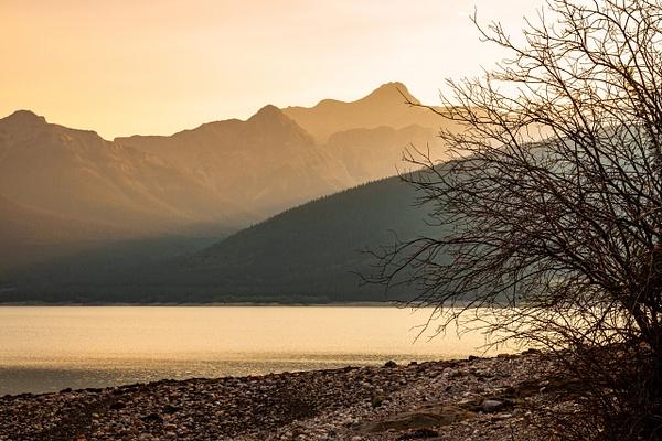 Abraham Lake 3 by BarbaraRothPhotography