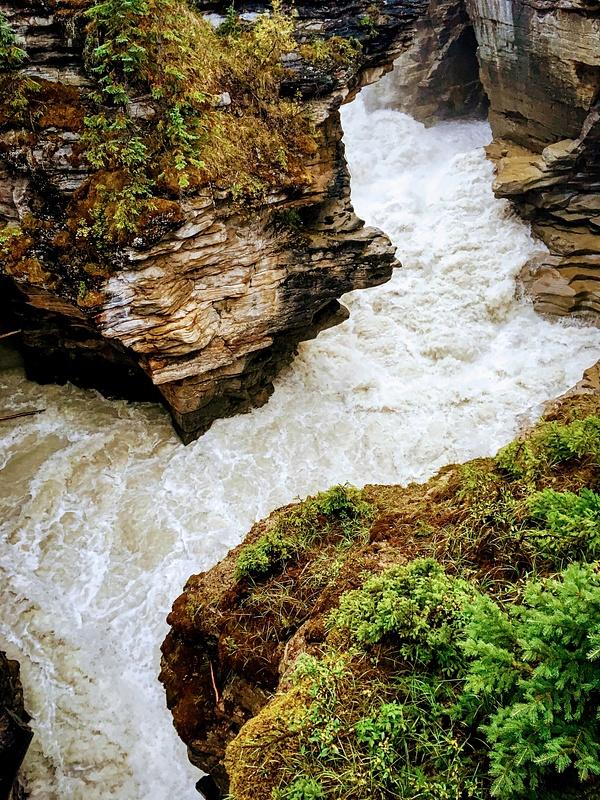 Canyon below Athabasca Falls