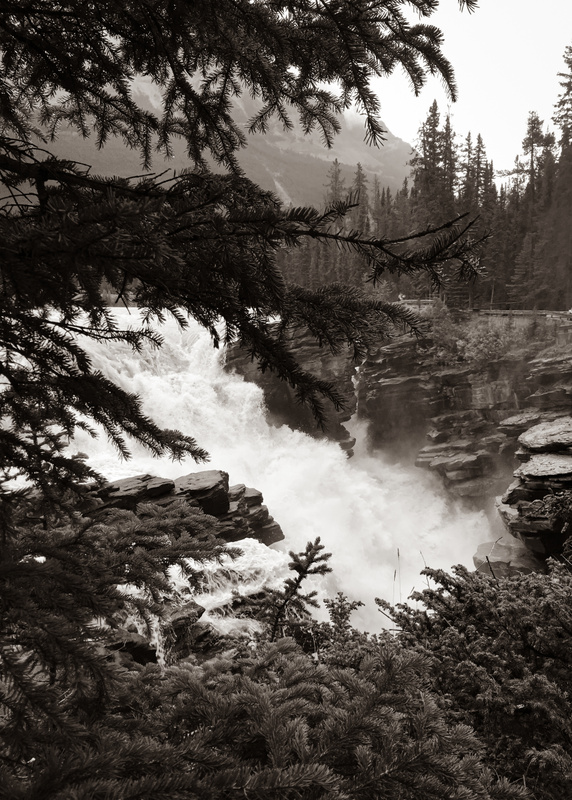 Athabasca Falls Black and White
