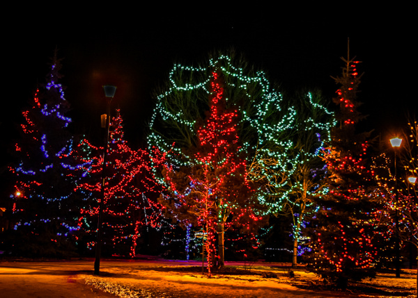 Central Park Lights by BarbaraRothPhotography