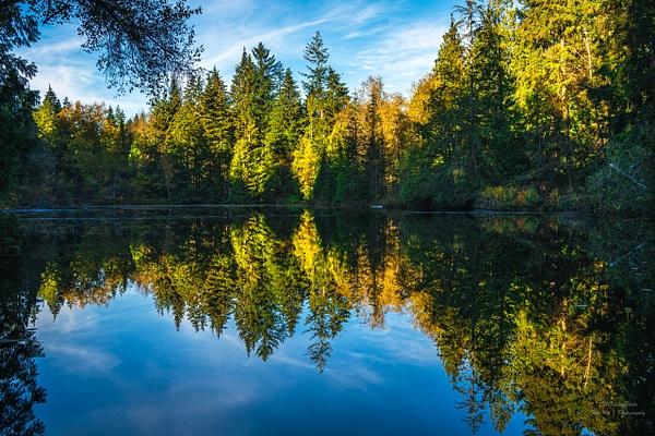 Mundy Park - Landscape - McKinlay Photo
