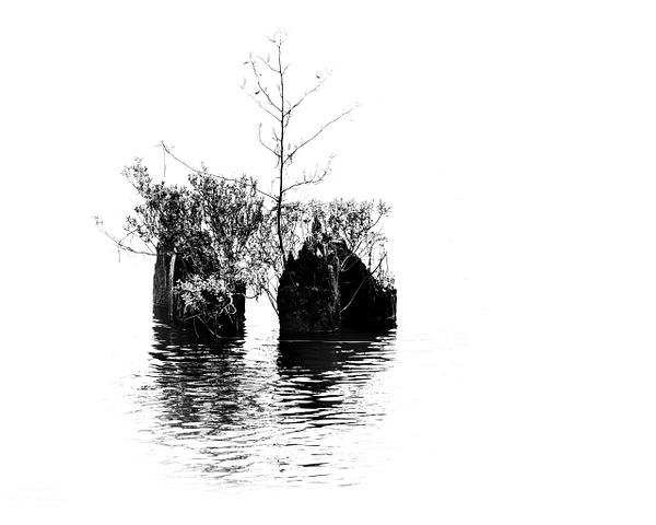 On The River - Minimalism - McKinlayPhoto