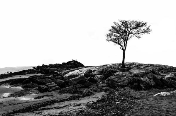 Stand Alone - Minimalism - McKinlayPhoto