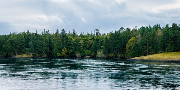 Active Pass, British Columbia - Landscape - McKinlay Photo