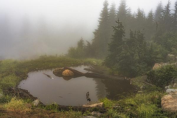 A - Landscape - McKinlay Photo