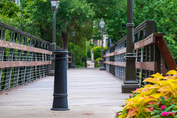 HP Footbridge Low Color (1 of 1) - Texas - KDS Imagery Photography