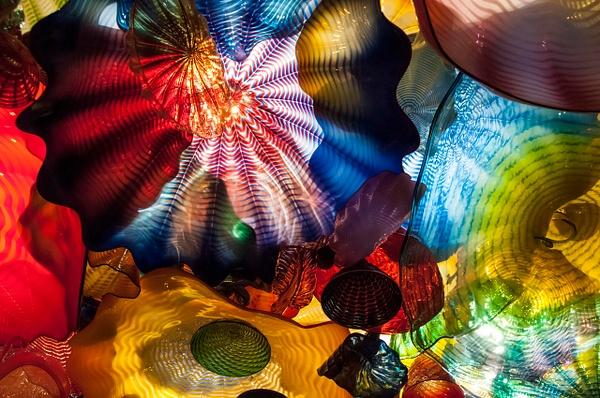 Seattle: Chihuly Garden and Glass (Seattle Center) - Spotlight: Seattle - Jonathan C. Watson Photography