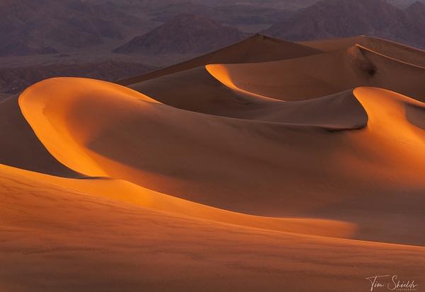 Golden Dunes - Tim Shields - Rockscapes - Tim Shields Landscape Photography