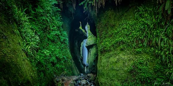 O-LN_Tim-Shields_Rain-Forest-Canyon - Rockscapes - Tim Shields Landscape Photography