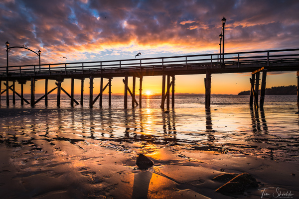 White Rock Pier Sunset 7250 4k_ - Rockscapes - Tim Shields Landscape Photography