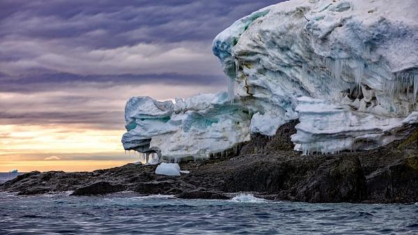 4. GOURDIN ISLAND  (27) - ANTARCTICA - January 2020 - François Scheffen Photography