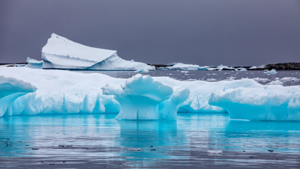 10. PLENEAU ISLAND (8) - ANTARCTICA - January 2020 - François Scheffen Photography