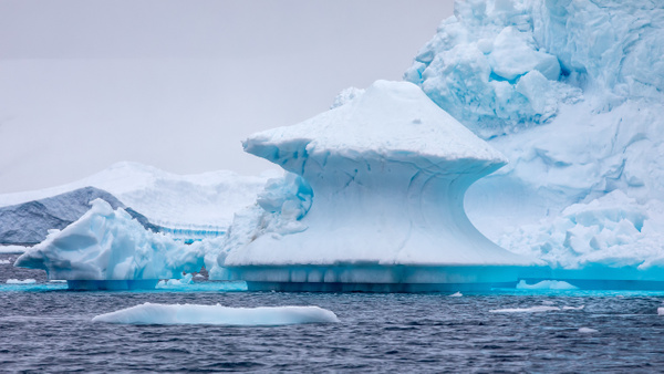 10. PLENEAU ISLAND (10) - ANTARCTICA - January 2020 - François Scheffen Photography