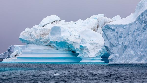 10. PLENEAU ISLAND (12) - ANTARCTICA - January 2020 - François Scheffen Photography