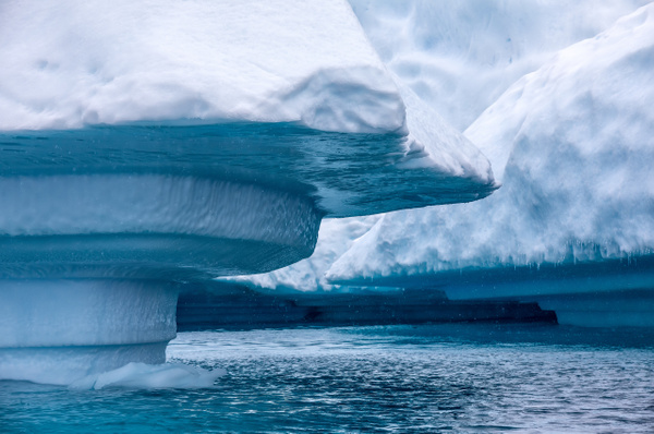 10. PLENEAU ISLAND (14) - ANTARCTICA - January 2020 - François Scheffen Photography