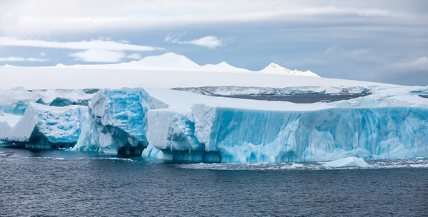 2 - Antarctic Sound (8) - ANTARCTICA  - January 2010 - François Scheffen Photography