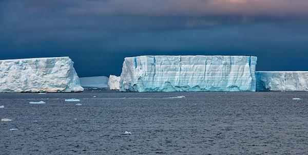 6 - Antarctic Sound (7) - ANTARCTICA  - January 2010 - François Scheffen Photography