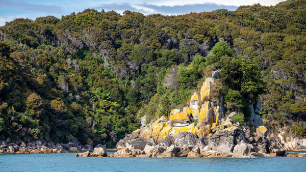 Abel Tasman National Park (1) - NEW ZEALAND - February 2014 - François Scheffen Photography