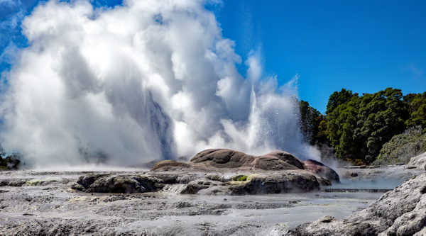 Rotorua - Te Puia (5) - NEW ZEALAND - February 2014 - François Scheffen Photography