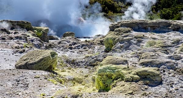 Rotorua - Te Puia (4) - NEW ZEALAND - February 2014 - François Scheffen Photography