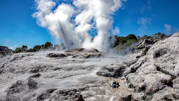 Rotorua - Te Puia (6) - NEW ZEALAND - February 2014 - François Scheffen Photography