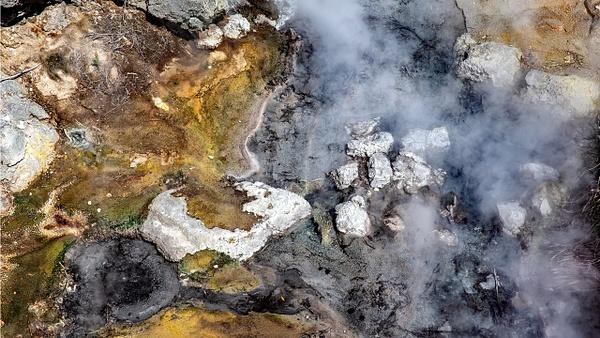 Rotorua - Te Puia (7) - NEW ZEALAND - February 2014 - François Scheffen Photography
