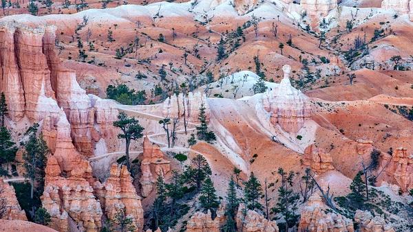 03 Bryce Canyon National Park (8) - U.S. NATIONAL PARKS - September 2015 - François Scheffen Photography