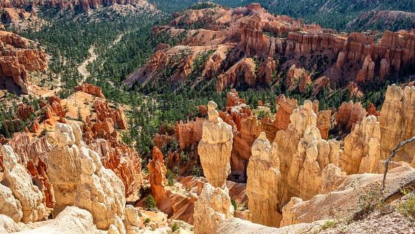 03 Bryce Canyon National Park (13) - U.S. NATIONAL PARKS - September 2015 - François Scheffen Photography