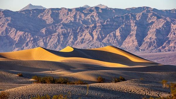 15. Death Valley N.P.  (1) Mesquite Flat Sand Dunes - U.S. NATIONAL PARKS - September 2015 - François Scheffen Photography