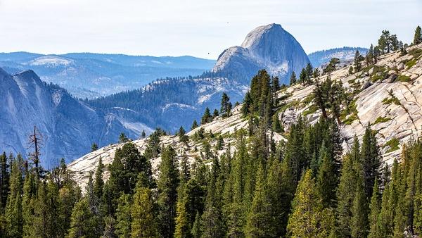17. Yosemite N.P (1) Half Dome - U.S. NATIONAL PARKS - September 2015 - François Scheffen Photography